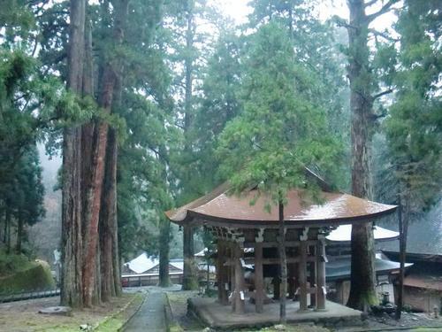 20111211-26.JPG