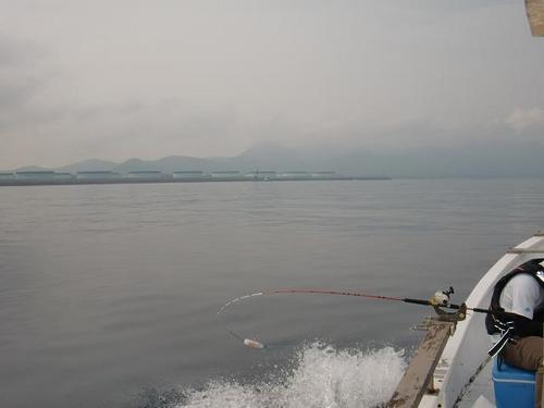20120526-8.JPG
